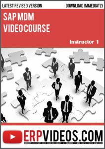SAP-MDM-Video-Course