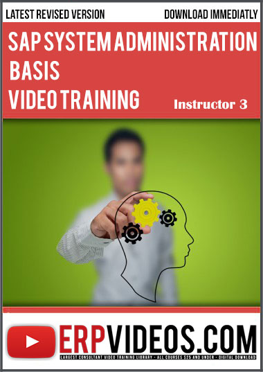 SAP Systems Administrator ADVANCED Online Video Course Training