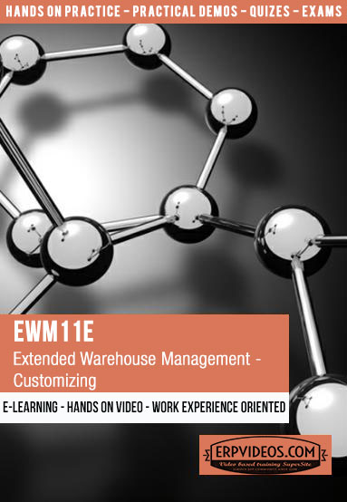 EWM11E - Extended Warehouse Management - Customizing - Overview -  E-Learning Video Hands On Demo SAP Online Training