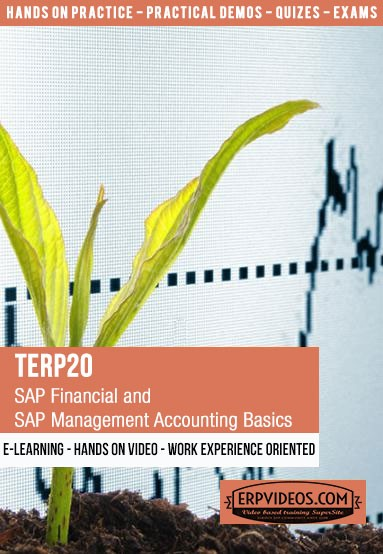 TERP20 - SAP Financial and Management Accounting Basics - E-Learning Video  Hands On Demo SAP Online Training